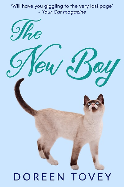 The New Boy (Feline Frolics #5)