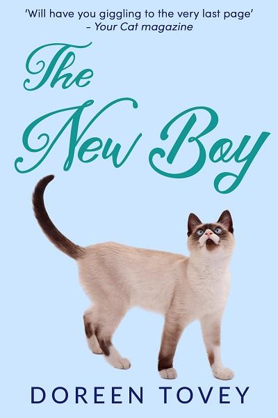 The New Boy (Feline Frolics #5)